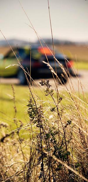 auto v pozadí